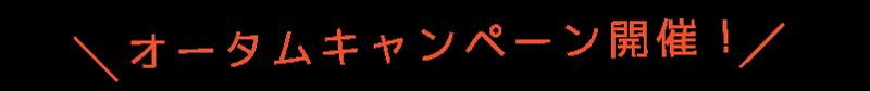 オータムキャンペーン開催